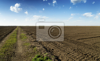 Camino rural a través de la tierra cultivable en el cielo azul.