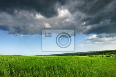 Campo fresco verde, azul cielo dramático y gris Nubes