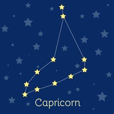 Póster Capricornio Tierra Constelación del zodíaco con estrellas en el cosmos. Imagen vectorial