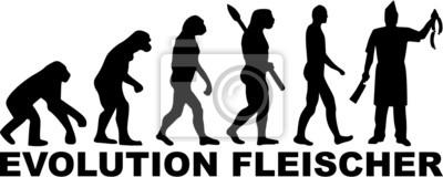 Carnicero Evolución Fleischer