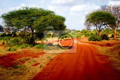 Carretera africana
