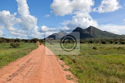 Carretera de tierra roja, arbusto con la sabana. Tsavo West, Kenia, África