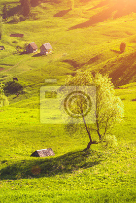 Casas de madera en un valle de primavera