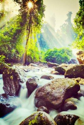 Póster Cascada tropical