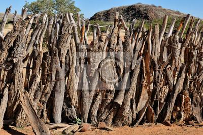 Cerca de un kraal Ovahimba