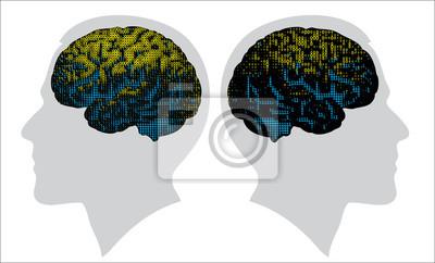 cerebro digital en color de