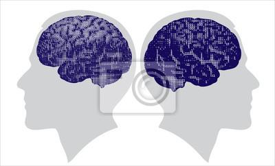 cerebro digitales