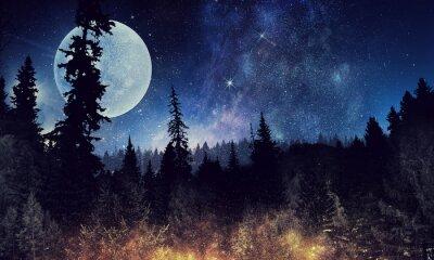 Póster Cielo estrellado y luna. Medios mixtos