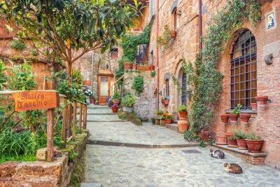 Póster Ciudad Vieja Toscana Italia