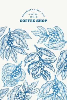 Póster Coffee tree branch vector illustration. Vintage coffee background. Hand drawn engraved style illustration.