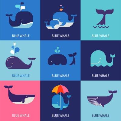 Póster Colección de iconos vectoriales de ballenas