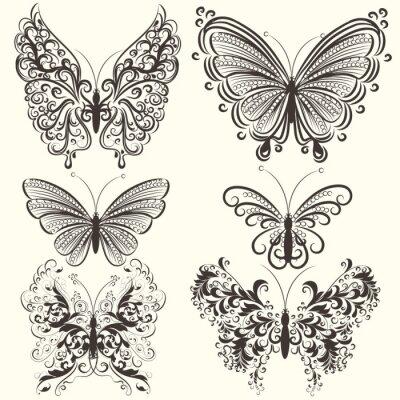 Póster Colección de mariposas abstractas vector remolino para el diseño