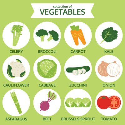 Póster colecciones de verduras, ilustración vectorial alimentos, conjunto de iconos de