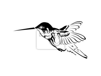 Colibri Tatuaje Blanco Y Negro Carteles Para La Pared Pósters Aves
