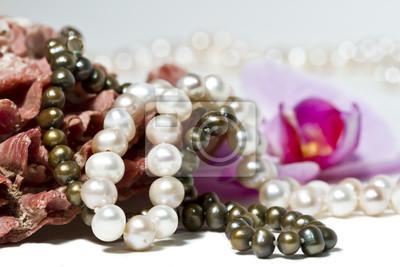 Collier de perles, coquillage et orchidée