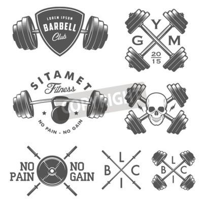 Póster Conjunto de gimnasia vintage emblemas etiquetas y elementos de diseño