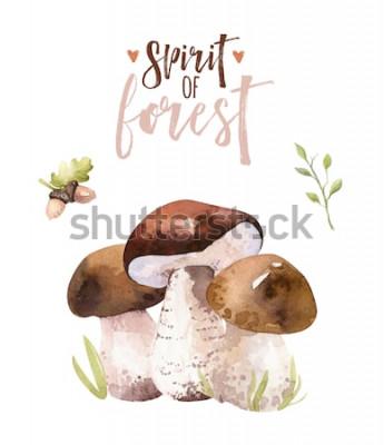 Póster Conjunto de setas de bosque bohemio de acuarela, bosque aislado cartel amanita ilustración, agárico de mosca, boletus, decoración de hongo boletus de tapa naranja.