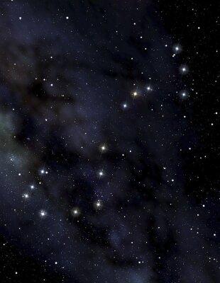 Póster Constelación de Escorpión en el cielo nocturno