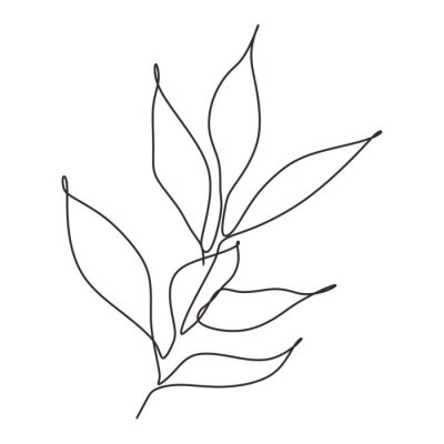 Póster Continuous line drawing of leaves plant vector. Illustration of botanical hand drawn minimalism artwork.