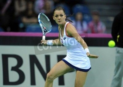 Póster CRACOVIA, Polonia - 07 de febrero 2015: Agnieszka Radwanska durante la Copa Federación de tenis taza en Polonia