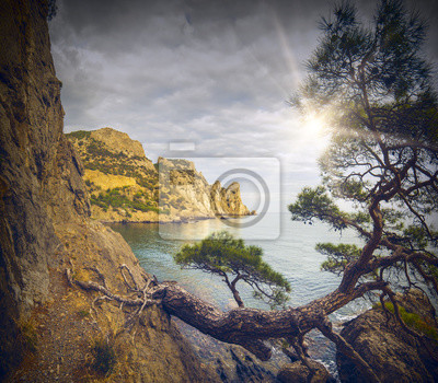 Crimea bahía del mar