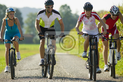 Póster Cuatro amigos en bicicleta por el camino.