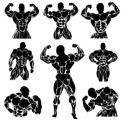 Póster Culturismo, Powerlifting, conjunto de vectores,
