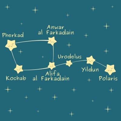 Póster Cute dibujos animados poco dipper constelación con el nombre de la ilustración vectorial estrellas
