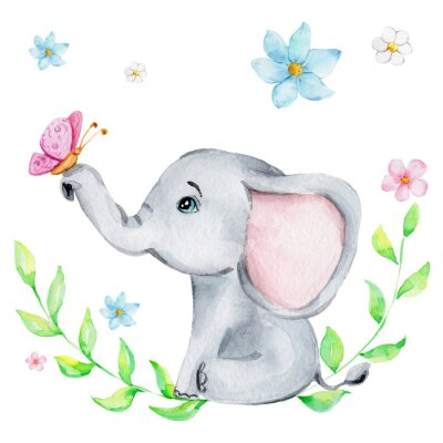Póster Cute little elephant with pink butterfly and flowers; watercolor hand draw illustration; with white isolated background