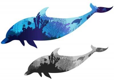 Póster delfín