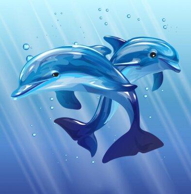 Póster Delfines