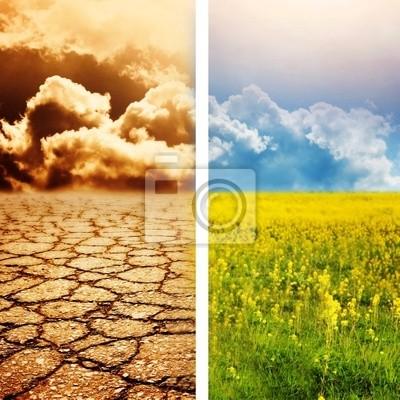 Desastre ecológico