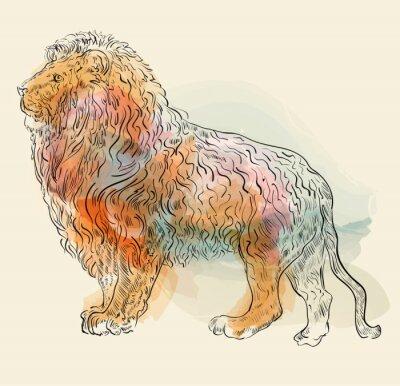 Póster Dibujado a mano ilustración vectorial con el león