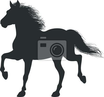 Dibujo De La Silueta En Blanco Y Negro De Caballo Corriendo Carteles