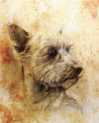 Póster Dibujo de lápiz de perro sobre papel viejo, papel vintage y estructura antigua con manchas de color.