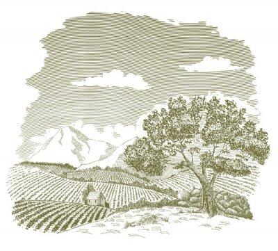 Póster Dibujo de pluma y tinta de un campo de granja con montañas en el fondo.