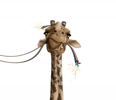 Póster Dibujo de una jirafa