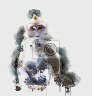 Póster Digital watercolor painting of Monkey. Painting of Beautiful image of a Monkey in the Forest. Isolated painting of Cute chimpanzee. Endangered Animal Abstract Paintings Wallpaper. Portrait of Monkey