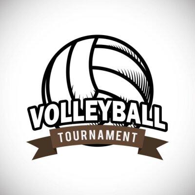 Póster Diseño del voleibol
