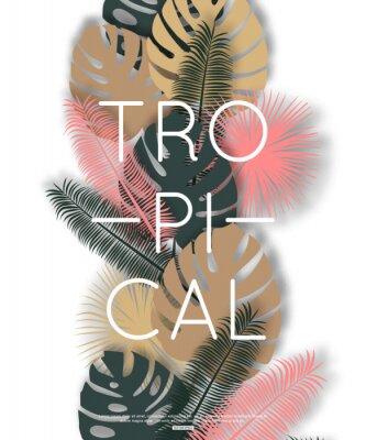 Póster Diseño tropical para la bandera, cartel. Ilustración del vector.