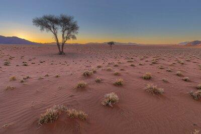 Dry red windswept sand in the Namib Desert