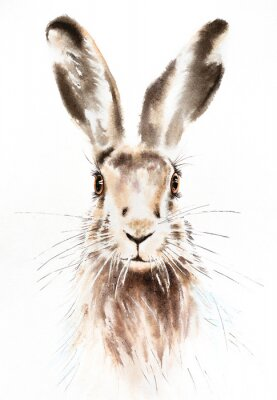 Póster Easter bunnies watercolor illustration, rabbit portrait isolated