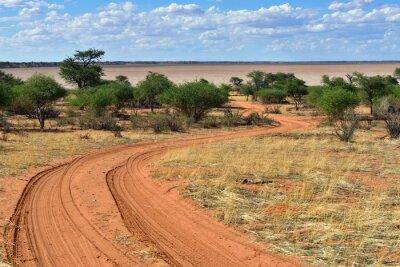 Póster El desierto de Kalahari, Namibia