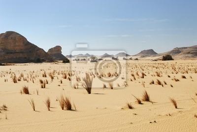 El desierto del Sahara, Egipto