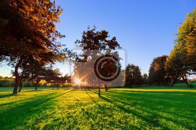 El final del verano, la puesta de sol de otoño en un parque