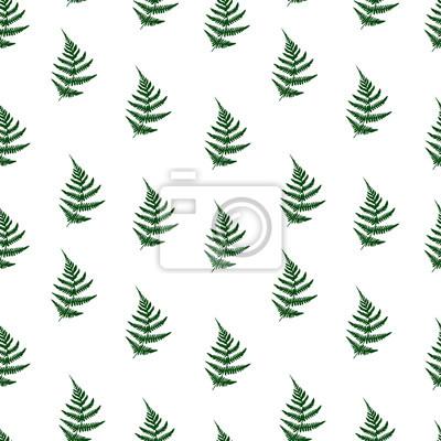 Póster El Helecho deja el fondo inconsútil del modelo. Ilustración vectorial Patrón floral transparente. Naturaleza textura de la tela orgánica background.fashion, patrón de vectores sin fisuras