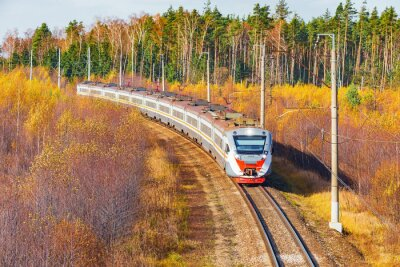 El moderno tren de alta velocidad se acerca a la estación en la mañana de otoño.