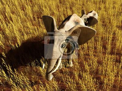 Elefante en el campo.