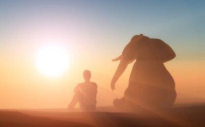 Póster Elefante y usted