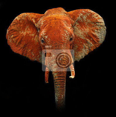 Elefantes en Tsavo Park